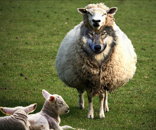 """Courtesy of focusorlando.org Many so called """"Friends in Life are really wolves in Sheep's Clothing.""""  Beware of those """"I Love You's from Friends."""