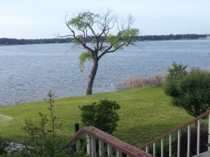 """Another view from porch of our lakehome on Cedar Creek Lake in East Texas"" copyright 2014 John J. Rigo"
