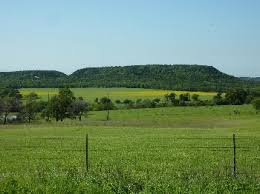 Beautiful views and scenery on FM Road 2709 in Henderson County, Texas estending from FM Road 316 off of 175 to 19.  Picture courtesy of Google Image Search.  Future wine trail of Silver Star Wine Trail of Texas